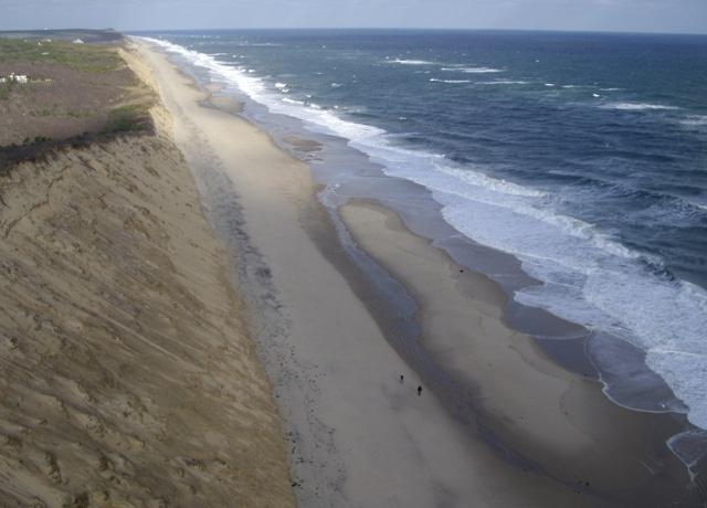 View up the beach at Wellfleet