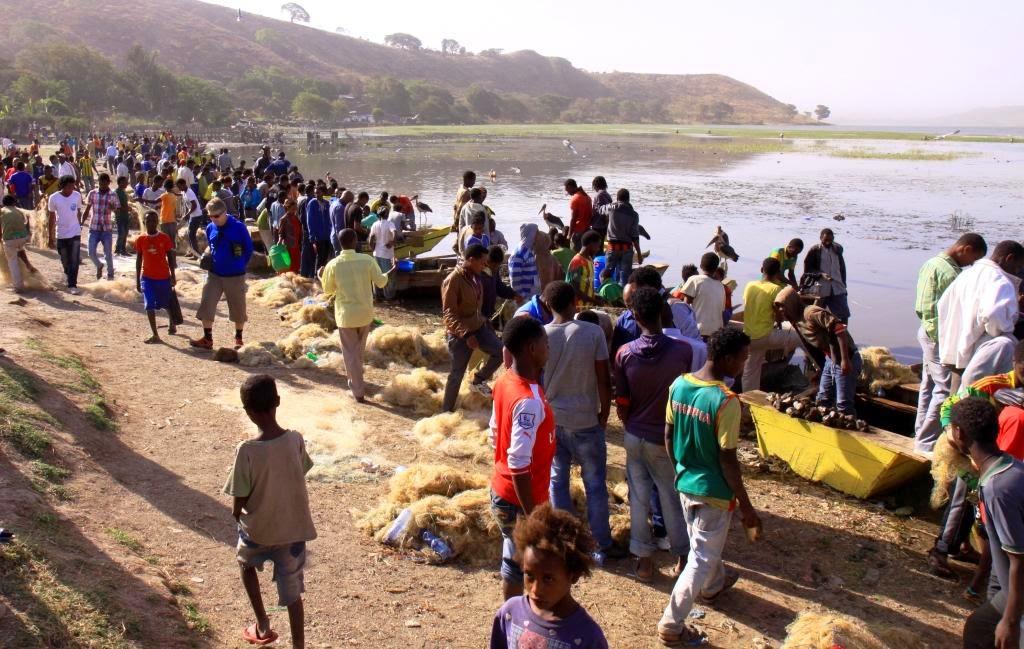 Fish market in Awassa, Ethiopia