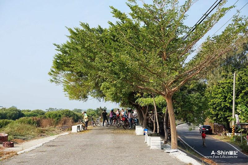 台江國家公園自行車道-23