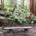 Bench along walk (56219)