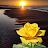 suzan artist avatar image