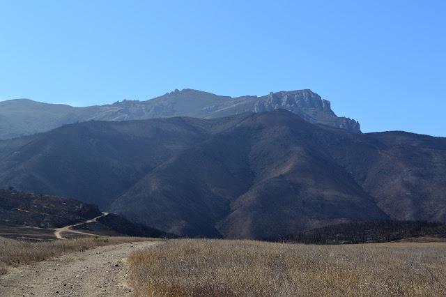 Boney Mountain behind the local scenery