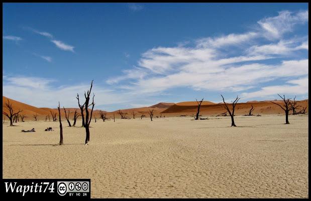 Balade australe... 11 jours en Namibie - Page 2 IMG_0796