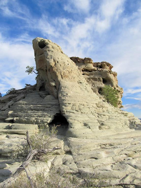Curtis Formation sandstone