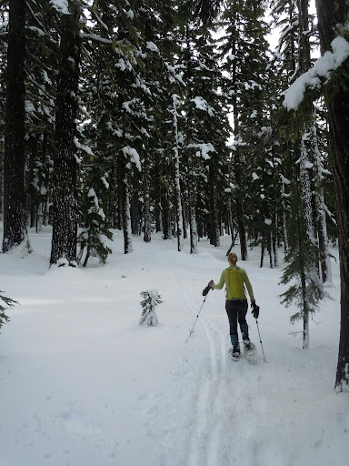 Snowshoeing to Maiden Peak
