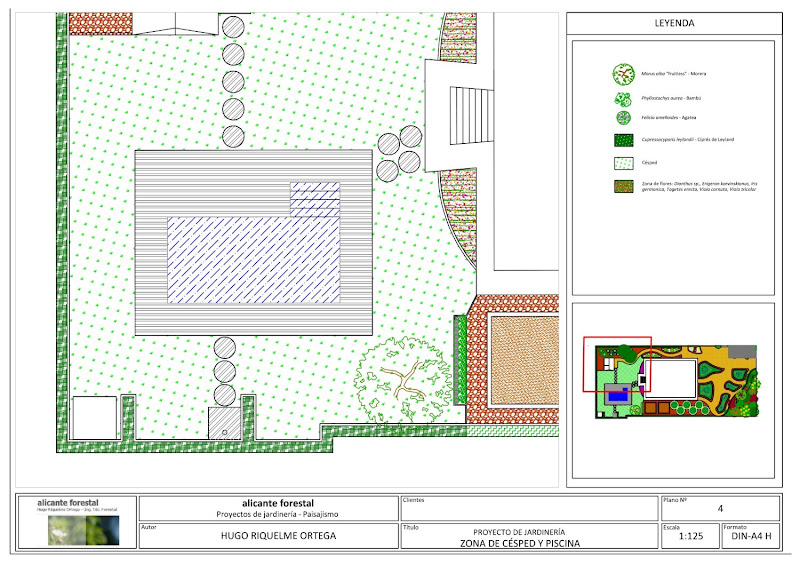 diseño de jardín proyecto jardinería alicante san vicente del raspeig paisajismo flores plantas