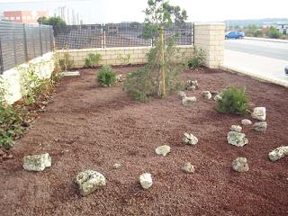 Blog de los aficionados a la jardineria parterre for Estudiar jardineria