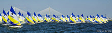 Sunfish sailboats- sailing regatta in Newport