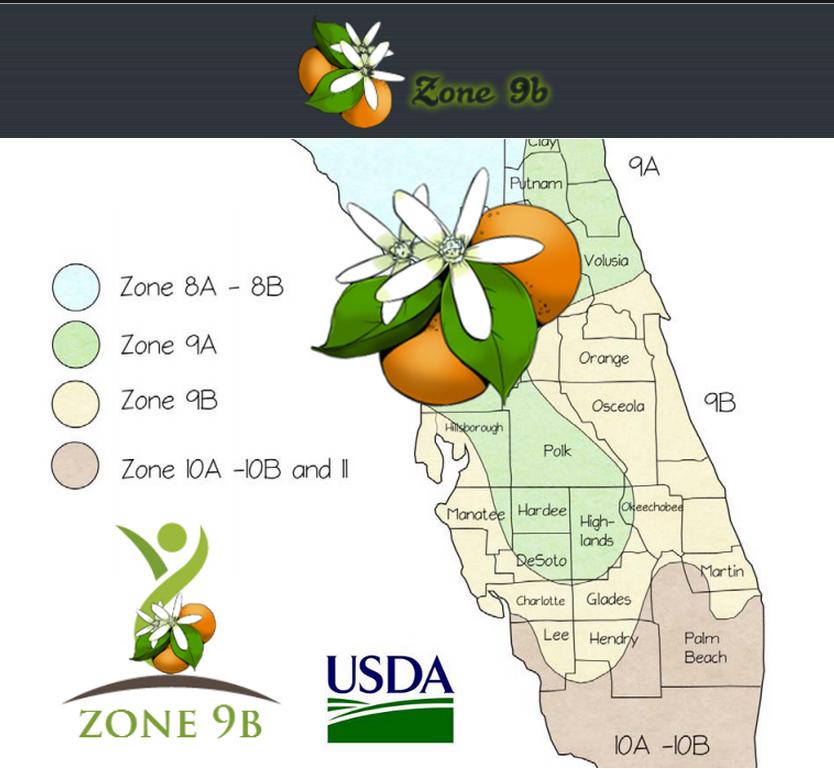 usda zone 9b