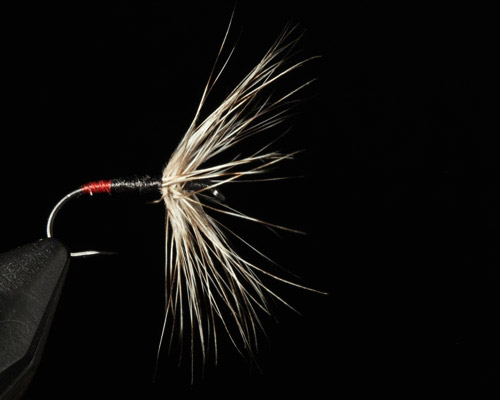 Tenkara fly with reverse hackle