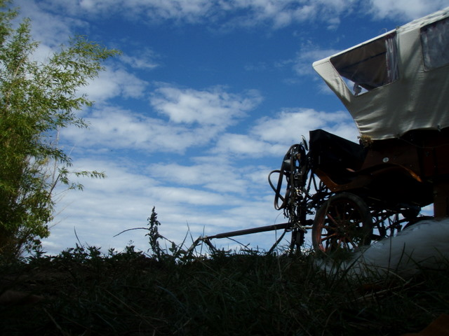 Thème juillet 2012 : Quand cheval rime avec poésie.... P8260204