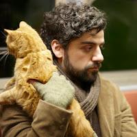 Dylan Peasnell's avatar