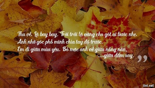 câu nói hay về Mùa Thu với lá vàng rơi
