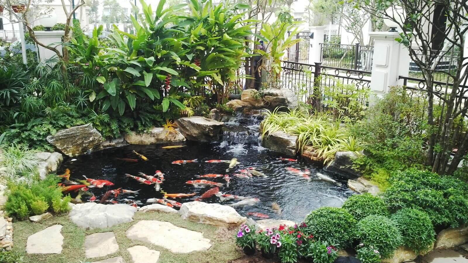 Mẫu tiểu cảnh với hồ cá nhỏ đẹp