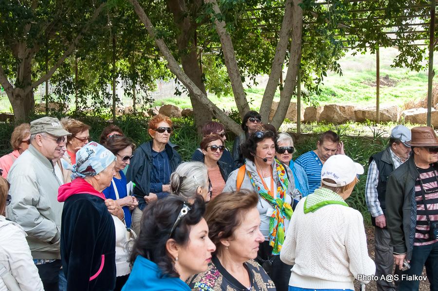 Экскурсия по реке Яркон в Тель Авиве и Яффо. Гид в Израиле Светлана Фиалкова.