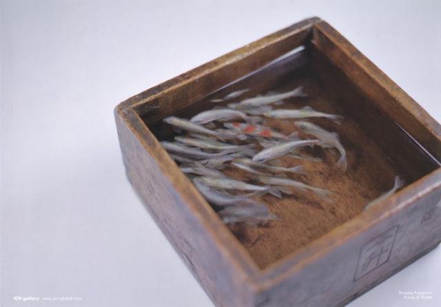 goldfish resin 3d Riusuke Fukahori 9