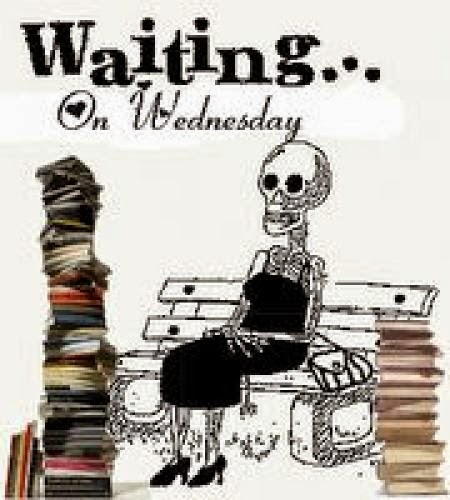 Waiting On Wednesday Fairy Tale By Cyn Balog