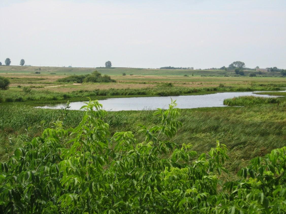 Bagno Wizna, Podlasie