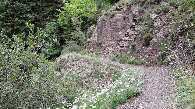 Φαράγγι της Μαύρης Σπηλιάς Προυσού