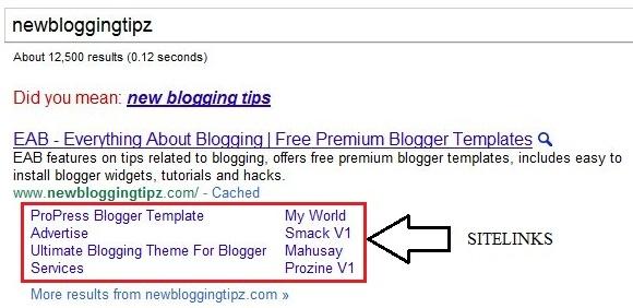newbloggingtipz-sitelink