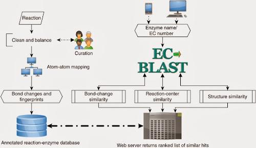 EC-BLAST