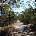 The Warrimoo Track (116350)