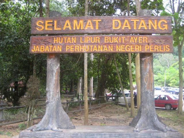 Hutan-Lipur-Bukit-Ayer-Recreational-Forest