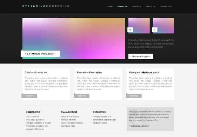 Ready CSS Portfolio HTML Website Template