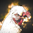 Suvi-Tuuli Allan avatar image