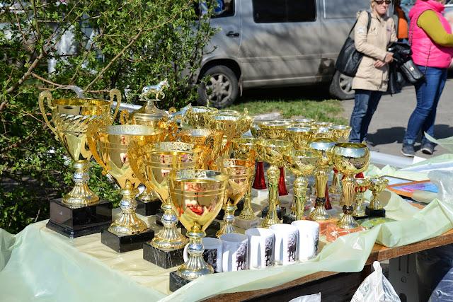 Кубок Аризоны-14(ПК)+ЧРКФ, Красноярск, 27 апреля 2014 DSC_5370
