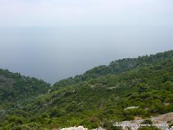Uroki wyspy Mljet - w drodze do miejscowości Saplunara