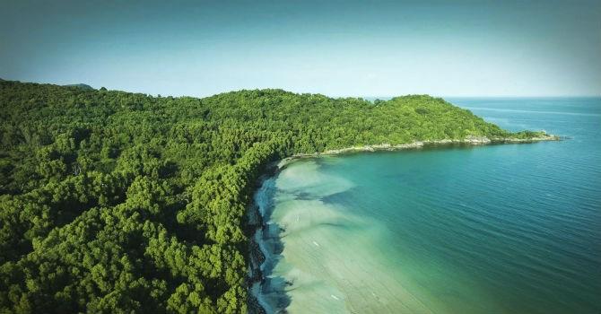 Thơ tình rừng và biển