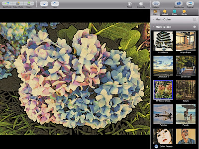my flower preset in Moku Hanga