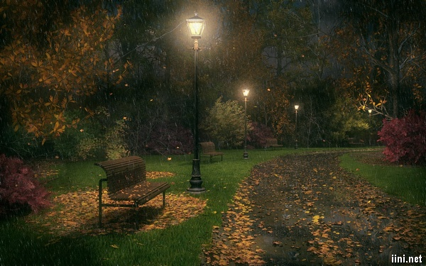 ảnh ghé công viên buồn trong mưa mùa thu