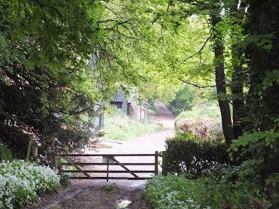 Bath Hills Farm, Earsham