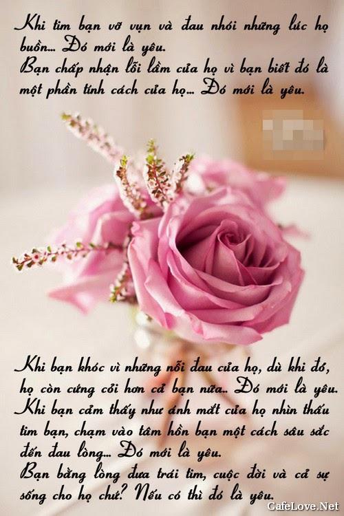 Ảnh hoa hồng đẹp với câu nói hay về tình yêu
