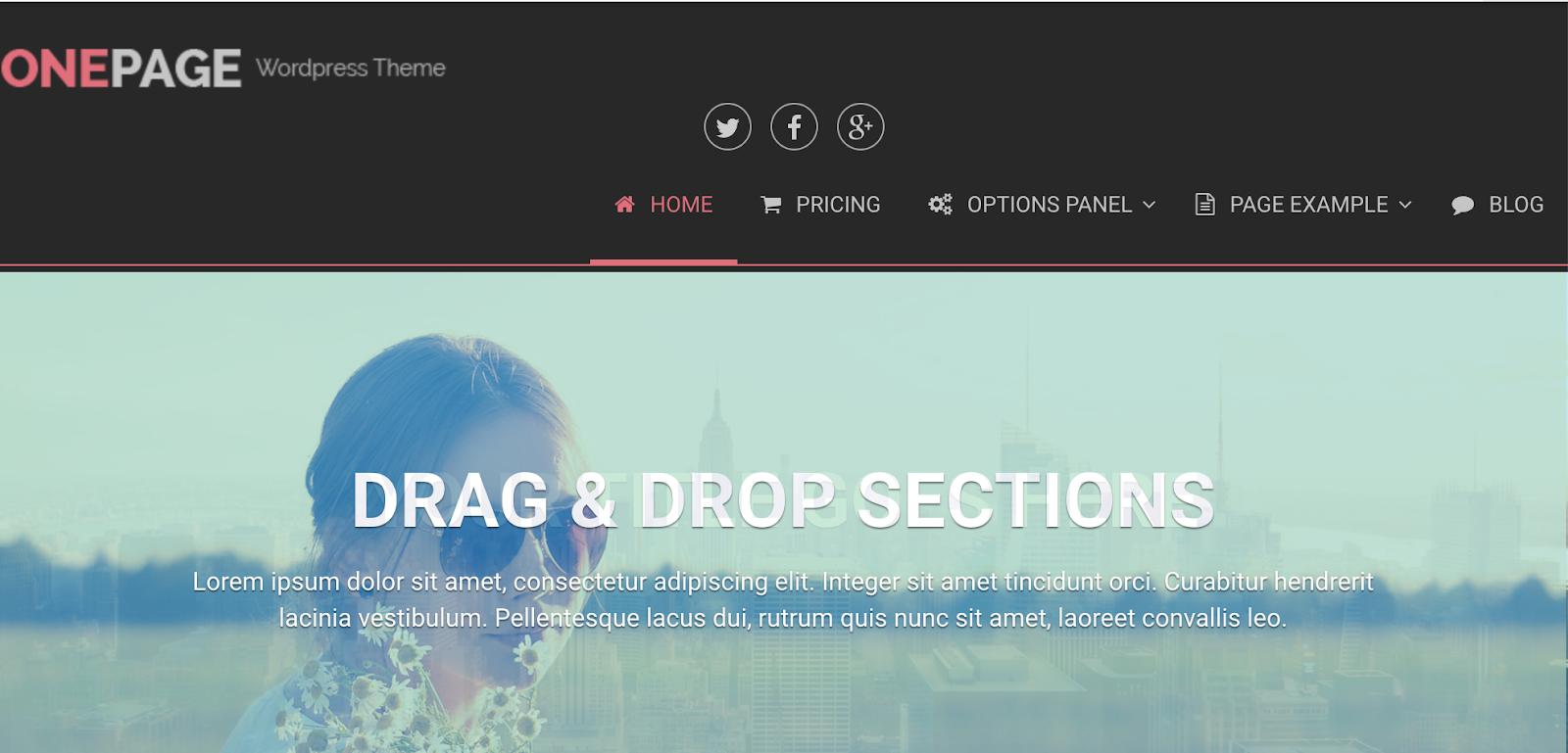 OnePage Landing Page WordPress Theme