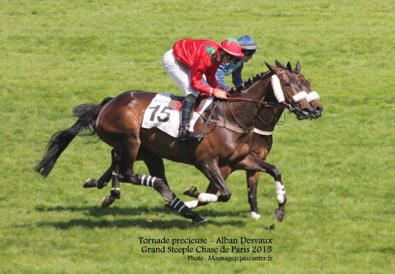 Photos Auteuil 17-05-2015 Journée du Grand Steeple IMG_0211