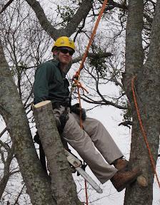 IMG 0256 - Volunteering at the 2011 Texas Tree Climbing Championship