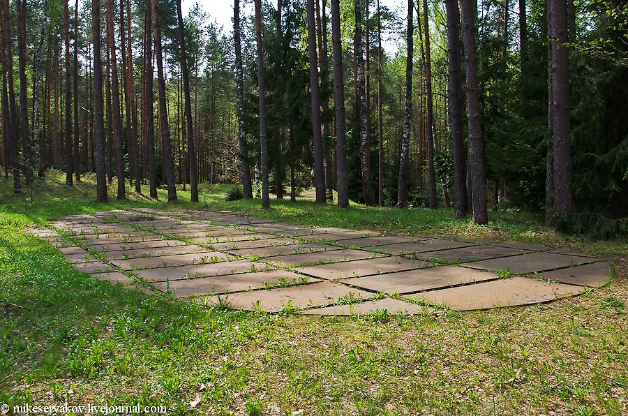 Расстрельные ямы польских офицеров
