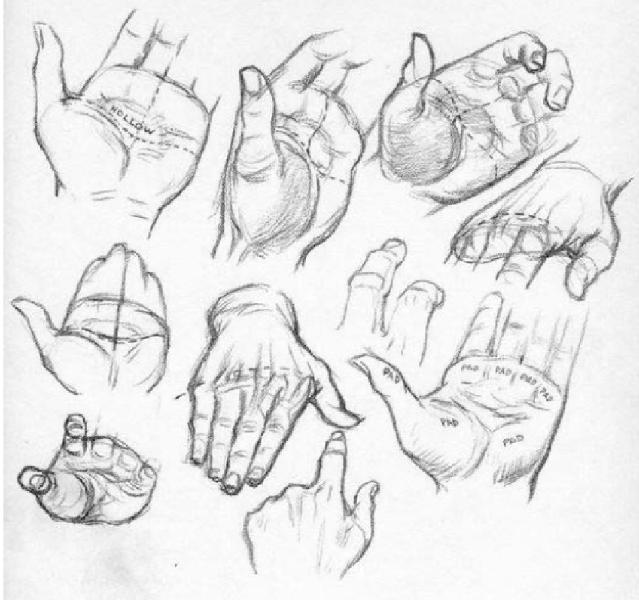 Docencia dibujo de manos - Dessin de mains ...