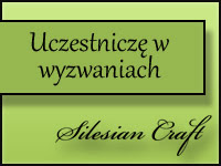 Wyzwania Silesian Craft