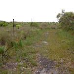 Grassed Service track (30817)