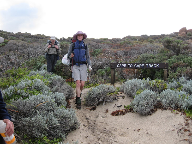 Typical vegetation on the Cape to Cape Track north of Conto Campground