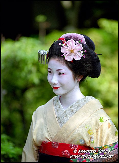 Art elegance geisha tradition unique world