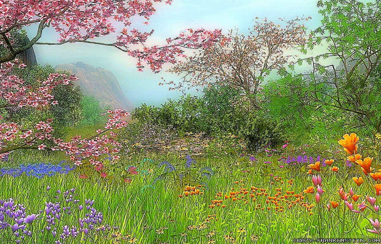 widescreen spring wallpaper | best free hd wallpaper