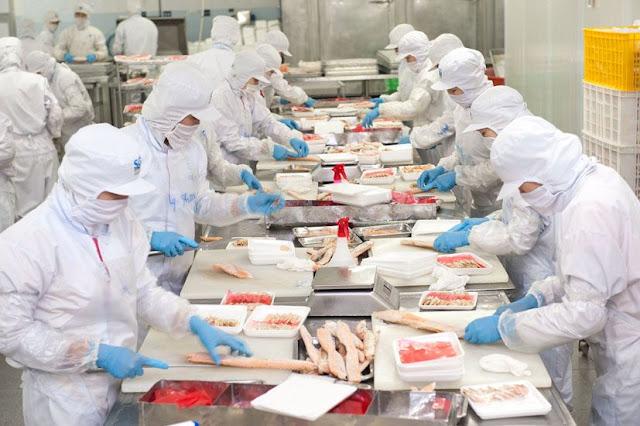 Đơn hàng chế biến thực phẩm cần 27 nữ làm việc tại Nagano tháng 01/2018