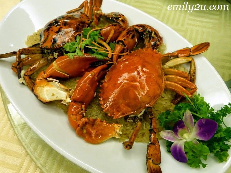 Singapore dancing crab