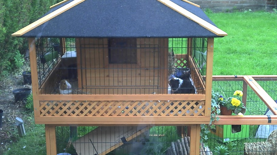 Fleece for outdoor hutch the guinea pig forum for Outdoor guinea pig hutch