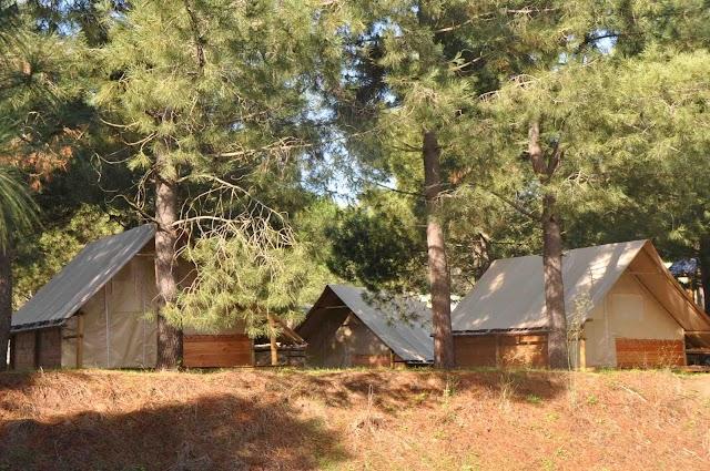 Camping Olva